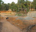 30 Cents Residential Plot for Sale at Thachottukavu Peyad Trivandrum sd (1)