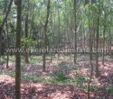 68 Cents Land for Sale near Attingal Trivandrum sf (1)