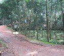 Land for Sale at Aryanad Trivandrum Kerala d (1)