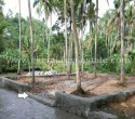 7 Cents Residential Plot for Sale at Kariavattom Trivandrum Kerala11