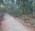 20 Cents Residential Land for Sale at Kanjiramkulam Trivandrum Kerala11