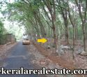 1-Acre-Land-Sale-at-Moongode-Thachottukavu-Trivandrum-Thachottukavu-Real-Estate-properties-Kerala-Trivandrum-Real-Estate