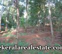 Land For Sale at Chemmannivila Naruvamoodu Pravachambalam Trivandrum
